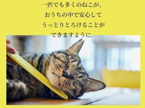 ねこじゃすりで撫でてもらいうっとりしている猫